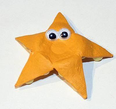 estrella de mar resultado