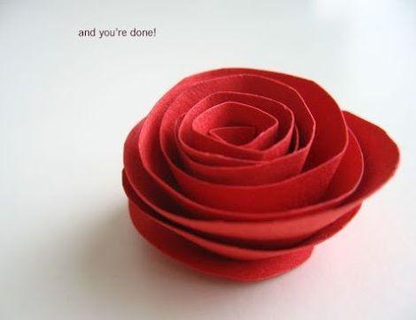 rosas dia de la madre capullo