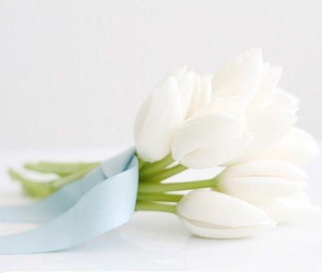 fiesta bautismo nino flores