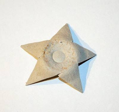 estrella de mar carton